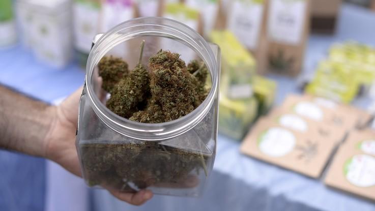 Salute, il Consiglio Superiore di Sanità dice 'no' alla vendita della cannabis light