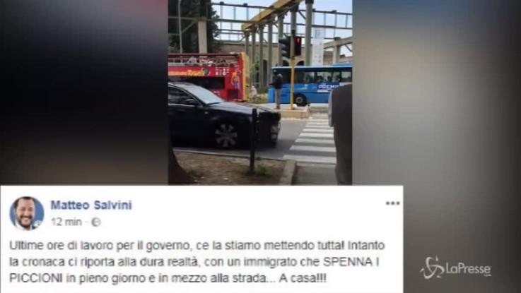 Salvini, su Facebook spunta il video del piccione spennato