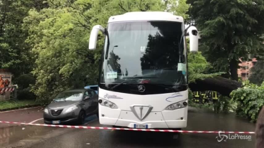 Firenze, albero cade su un bus di turisti: 14 feriti