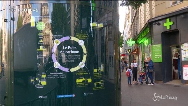 Parigi testa colonne d'alghe contro l'inquinamento