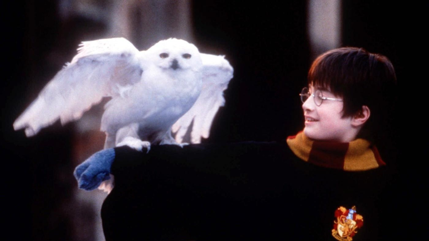 Harry Potter ora si ascolta: lo racconta Pannofino