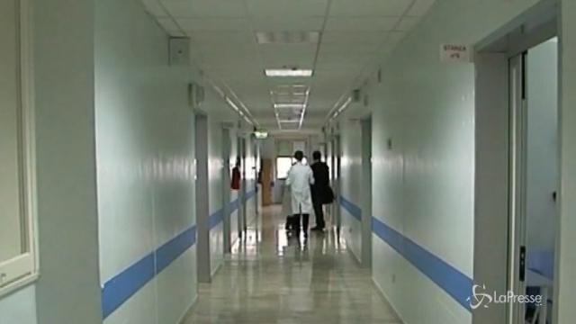 Chikungunya, nuovi casi in Emilia e Marche