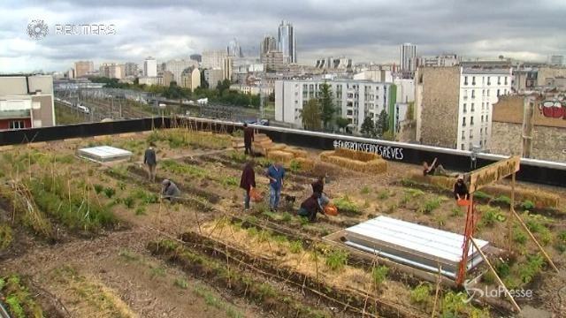 VIDEO Parigi, il tetto di un ufficio postale diventa una fattoria