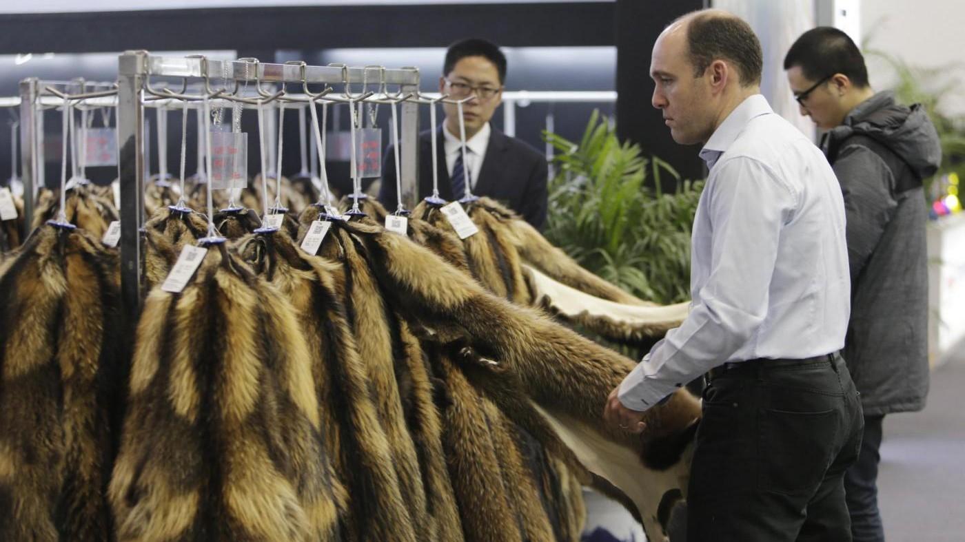 Gucci dice addio alle pellicce: stop dal prossimo anno