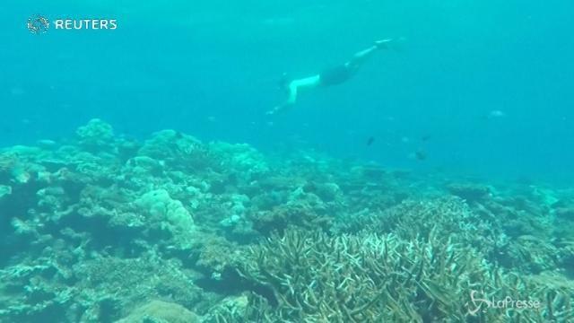 VIDEO Maldive, la campagna per l'ambiente di Nikolaj Coster-Waldau
