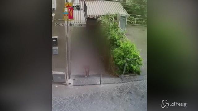 VIDEO Minorenni costretti a prostituirsi dal padre