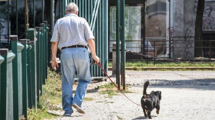 """L'Ocse lancia l'allarme: """"Italia sempre più vecchia, agisca ora contro le disparità"""""""