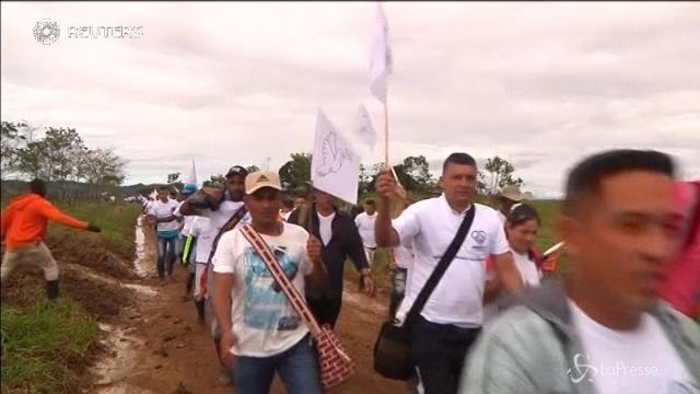 In Colombia le piantagioni di coca ostacolano la pace tra Stato e Farc