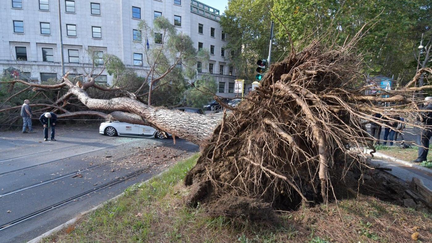 Roma, albero si schianta su auto: ferito un tassista