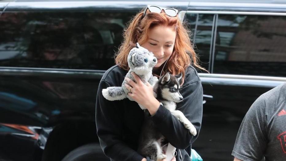 """Sophie Turner è sempre Sansa Stark: a spasso con il cucciolo di """"metalupo"""""""