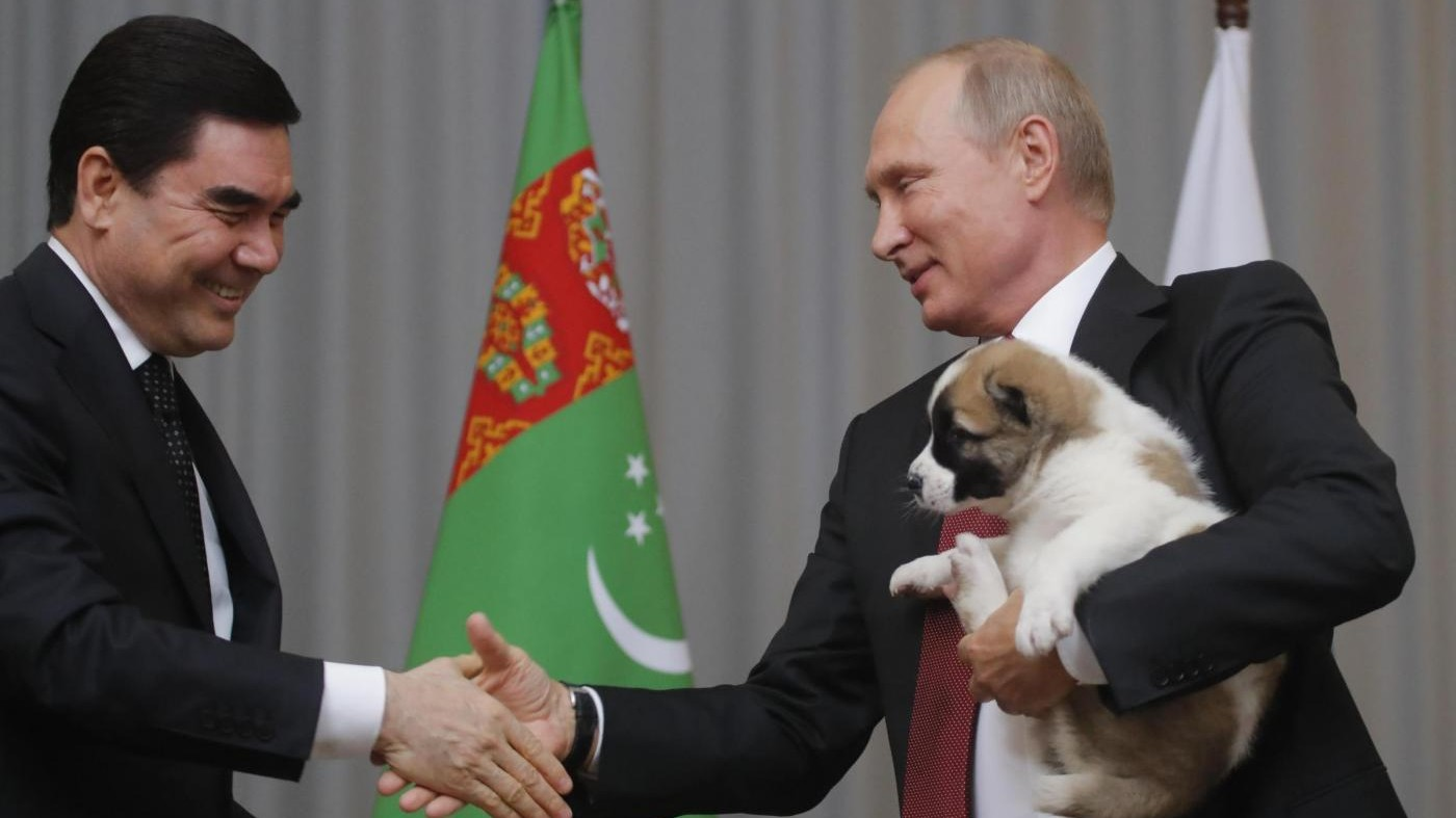 Baci e carezze per il suo regalo a quattro zampe: Putin coccola il nuovo cucciolo