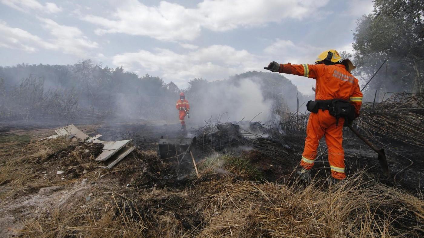 Incendi, all'Eur si teme per nube tossica. Raggi: Serve aiuto governo