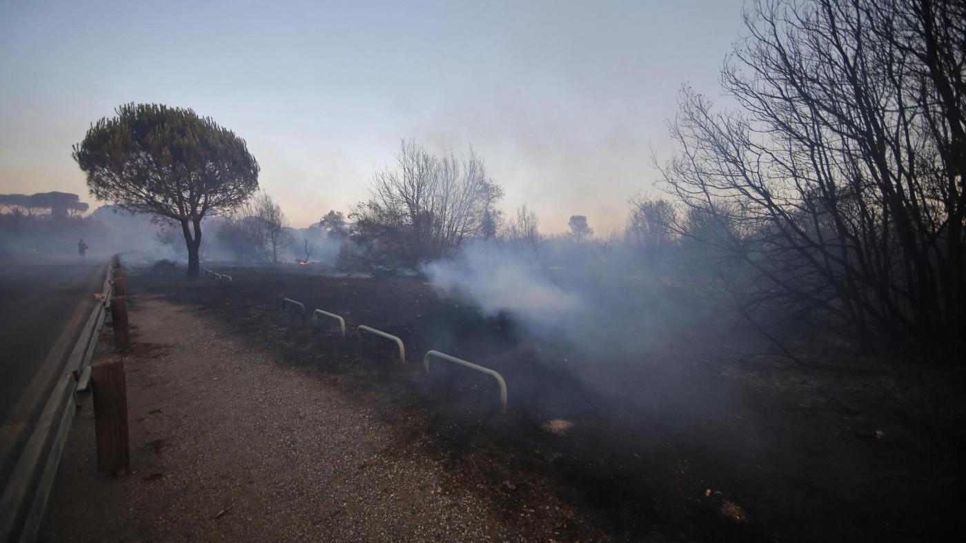 Incendio Castel Fusano, nuovi roghi nella pineta e sul litorale