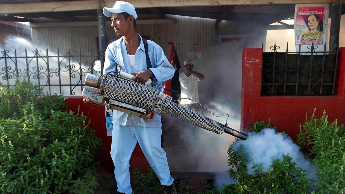 Tre casi di Chikungunya ad Anzio. Sono stati punti da una zanzara