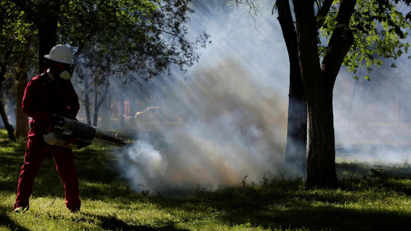 Chikungunya, stop donazione del sangue per 1,2 milioni di romani, 17 casi nel Lazio