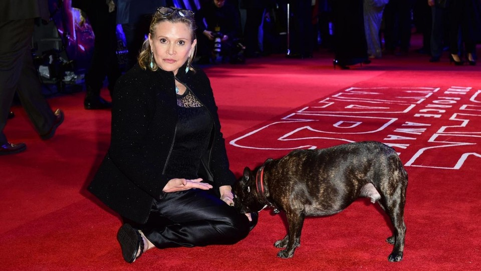 Carrie Fisher con il suo cane Gary ©LaPresse/PA
