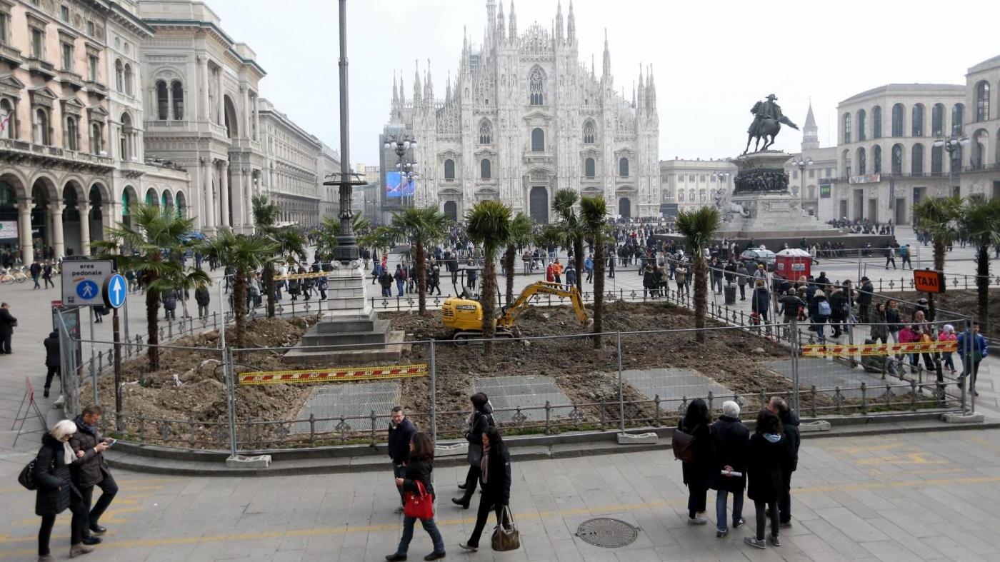 Palme bruciate in Duomo: individuato un gruppo di piromani