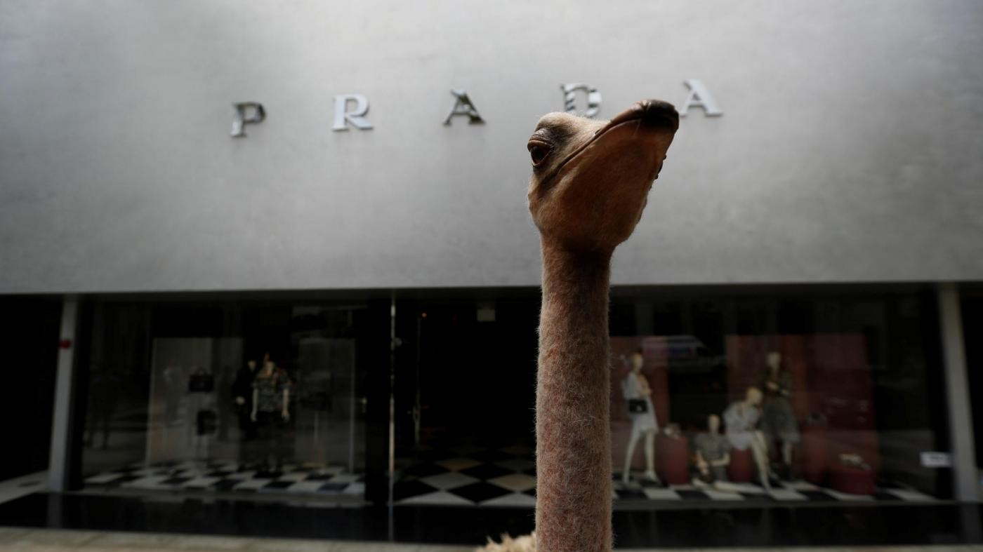 FOTO Beverly Hills, animalisti contro borse di struzzo Prada