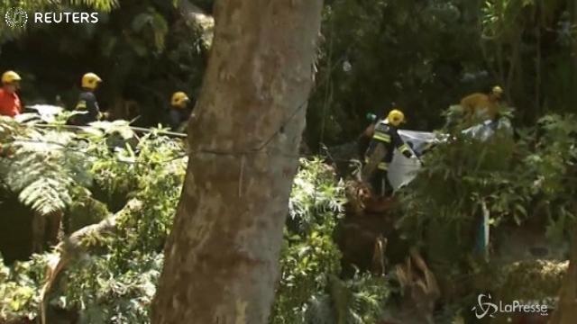 Albero cade sui fedeli a Madeira: almeno 11 morti