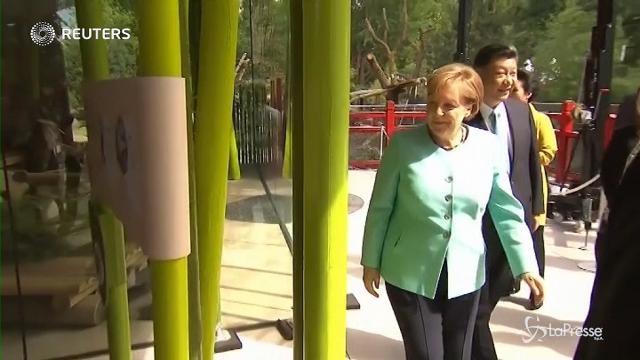Berlino:  vertice dai panda per Merkel e Xi Jinping
