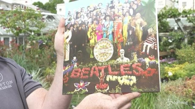 Musica: auguri 'Sgt Pepper'!