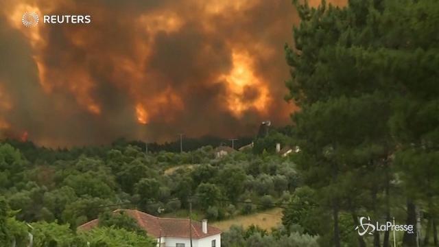 Incendio in Portogallo, decine di morti