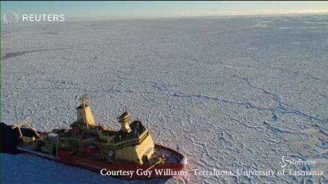 """Antartide, il raro fenomeno del ghiaccio che diventa """"pelle di drago"""""""