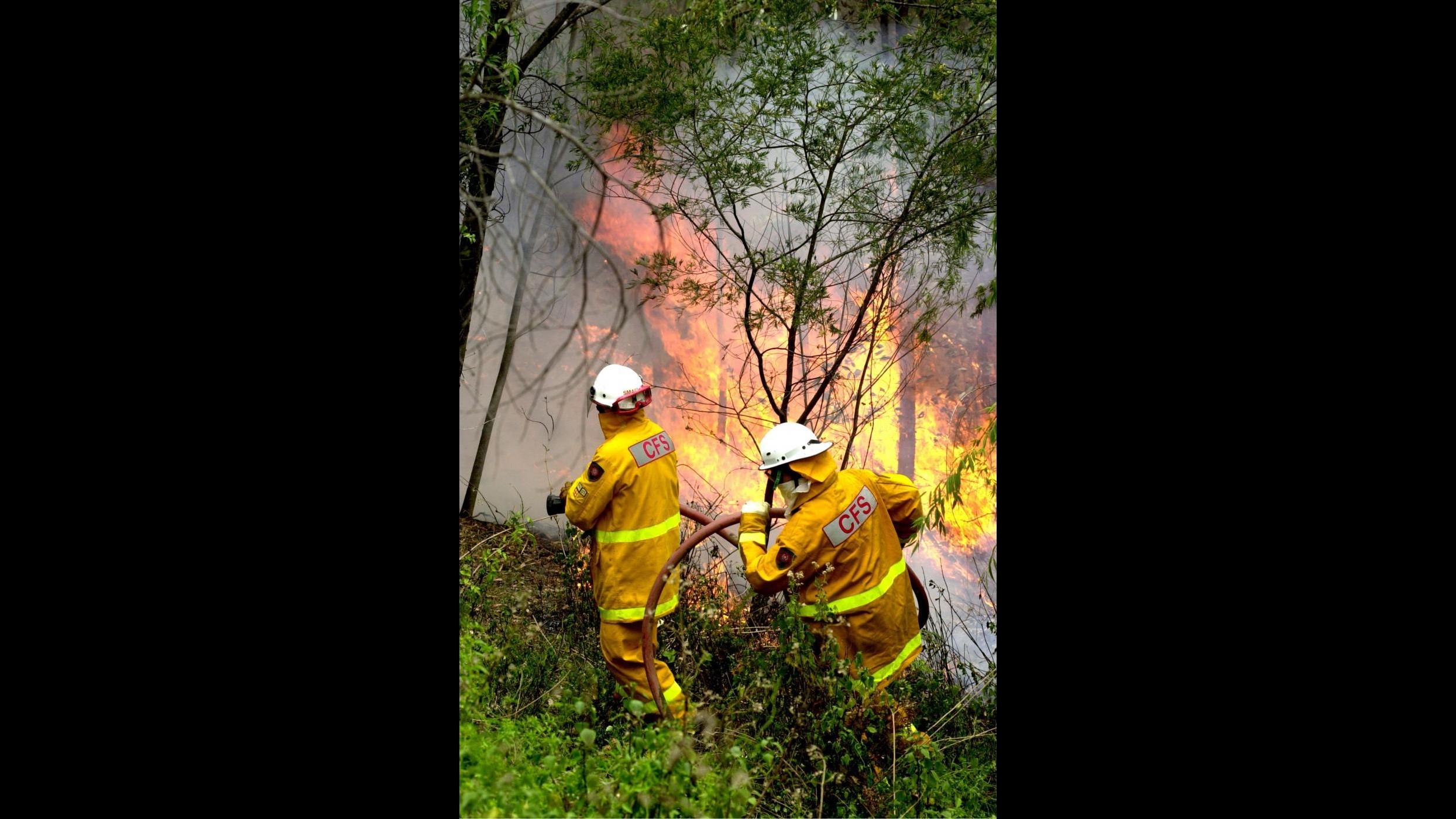 Incendi, Canadir ed elicotteri in azione per spegnere 37 roghi
