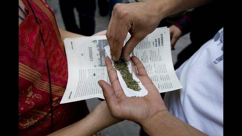 Droga, Corte costituzionale boccia legge Fini-Giovanardi