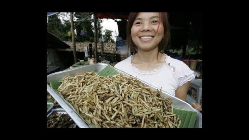 Fao, studio: Mangiando insetti si può sconfiggere la fame nel mondo