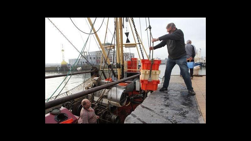 Ue trova accordo su riforma pesca: ambientalisti soddisfatti