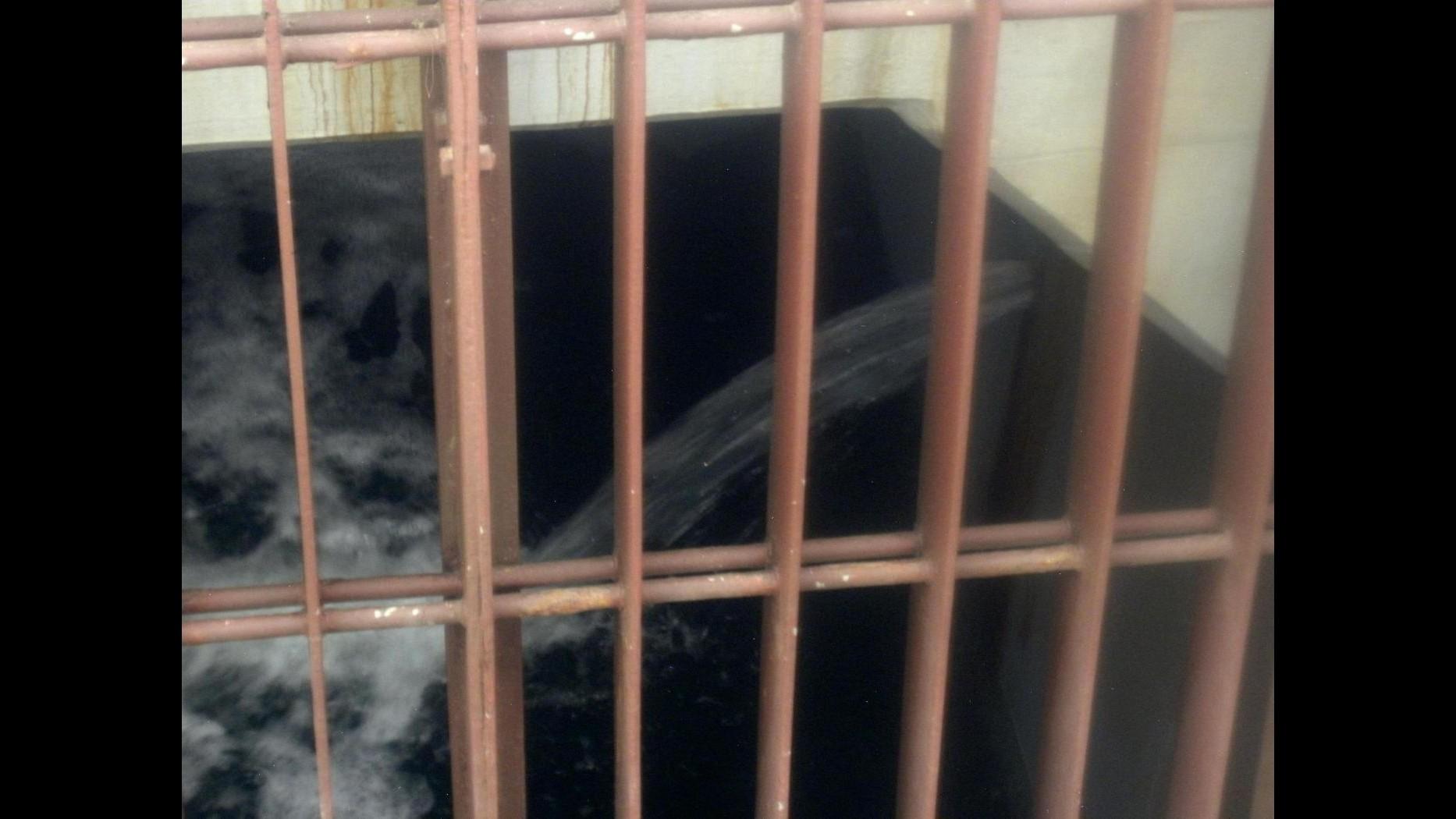 Spagna, neonato salvato da canale scolo ad Alicante: arrestata madre