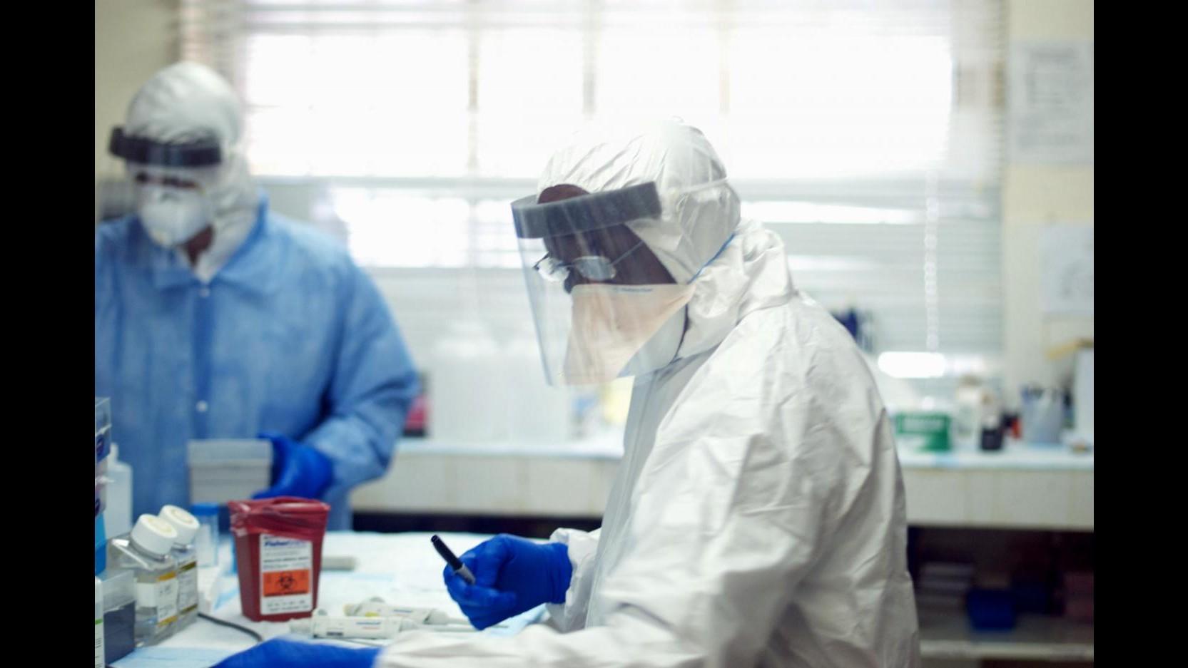 Ebola, medici: Donna Marche affetta da malaria, improbabile presenza virus