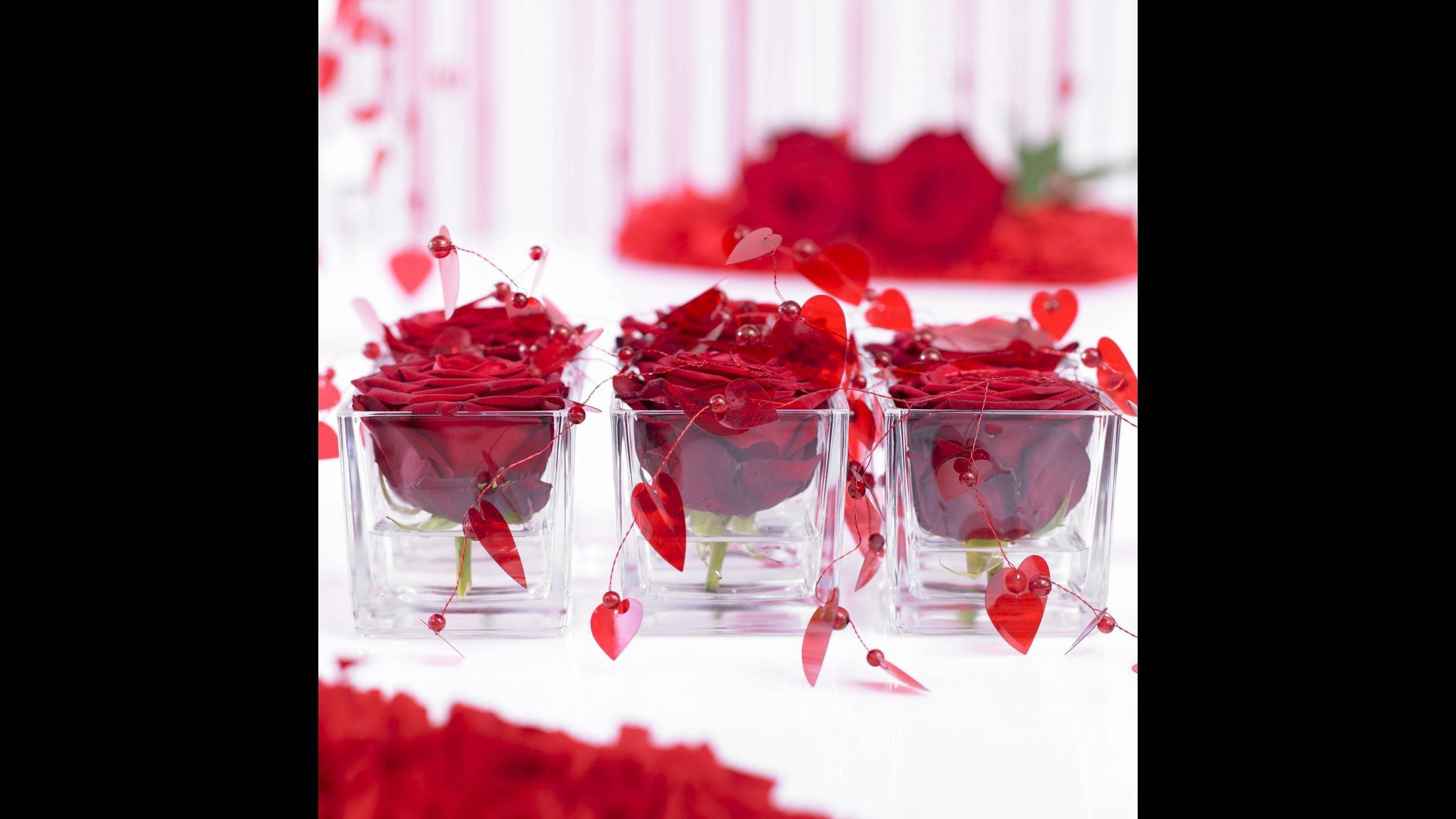 San Valentino, lo sfruttamento in Kenya dietro rose vendute in Europa