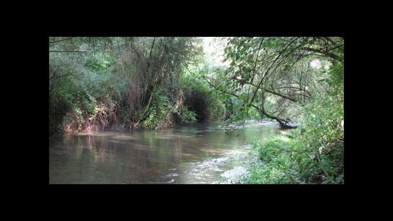 Roma, ritrovato dalla polizia un piede umano nel fiume Aniene