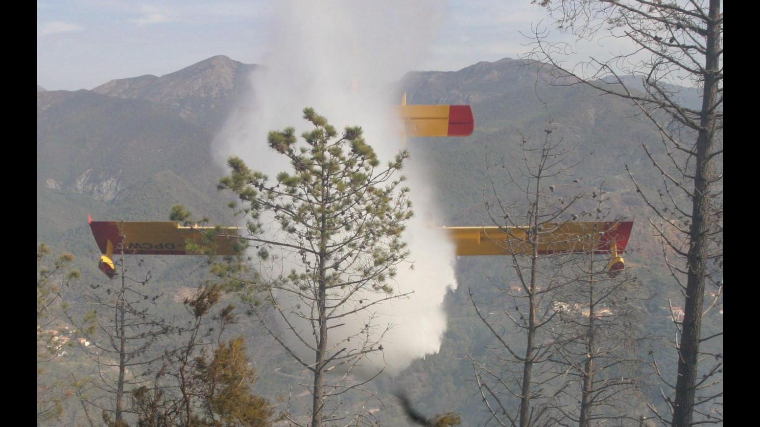 Incendi, 115 roghi divampati ieri:Campania e Lazio Regioni più colpite