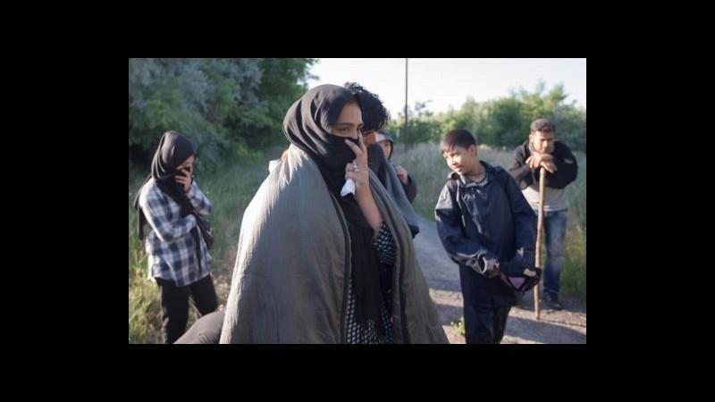 Al via in Ungheria la costruzione del muro al confine con la Serbia per fermare i migranti