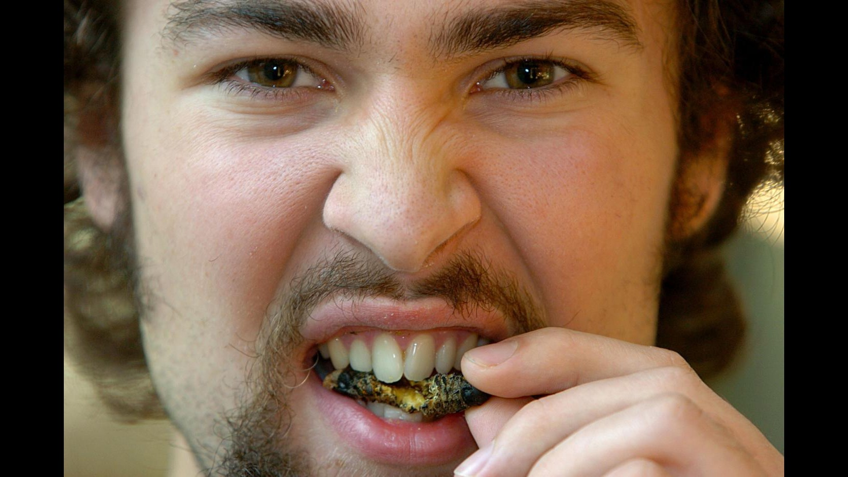 Expo, Mascaretti: Mangiare insetti per salvare il pianeta