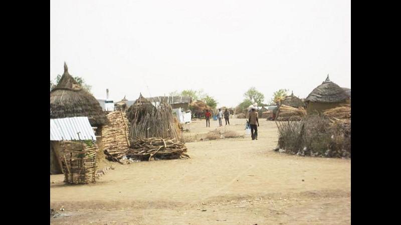 Niger, attacco Boko Haram in villaggio nel sud: 4 persone uccise