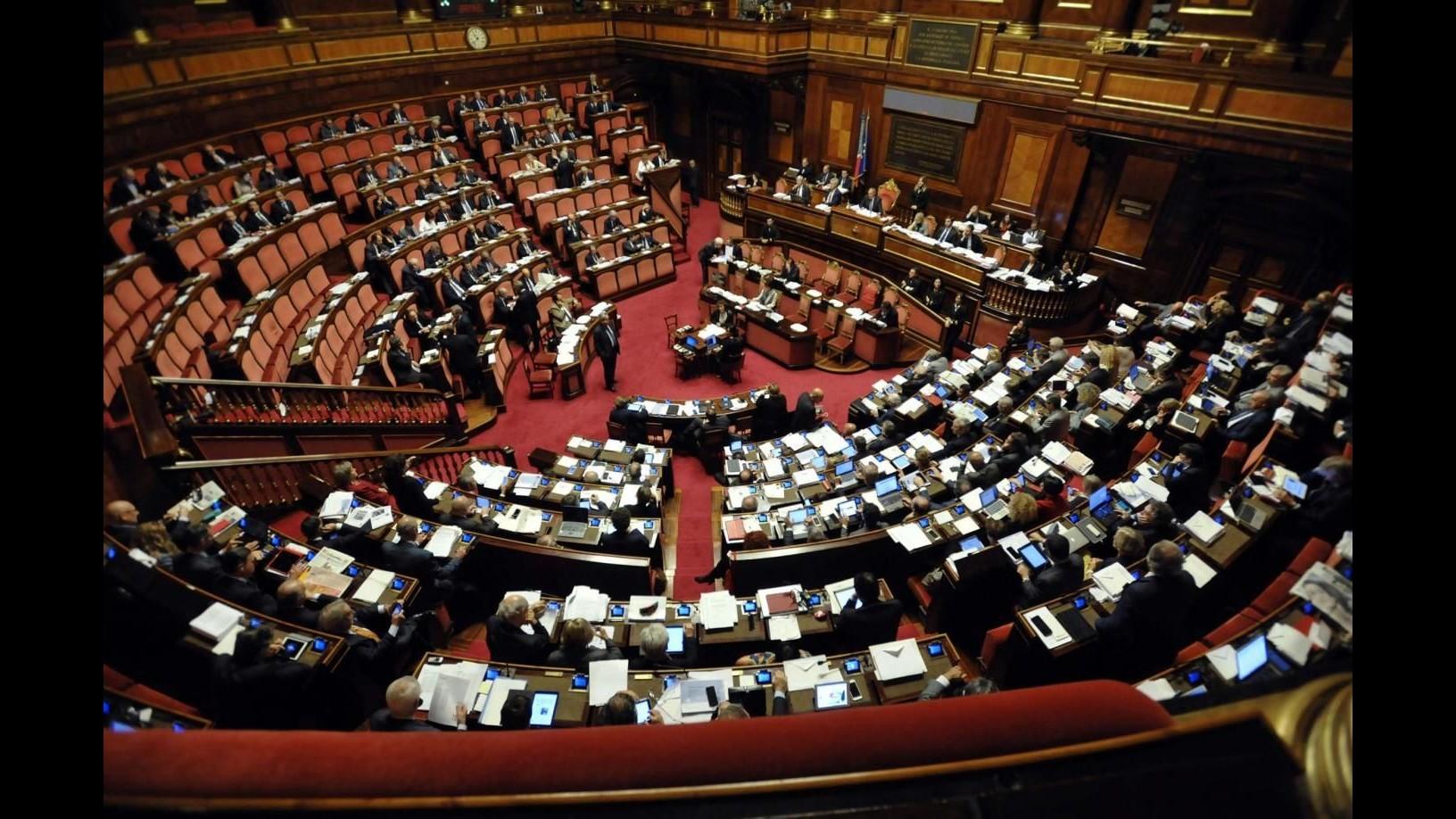 Omicidio stradale, ipotesi fiducia in aula Senato su disegno legge