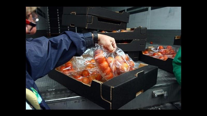Lavoro, Istat: 3.5 milioni di unità lavoro irregolari nel 2013 (+0.5%)