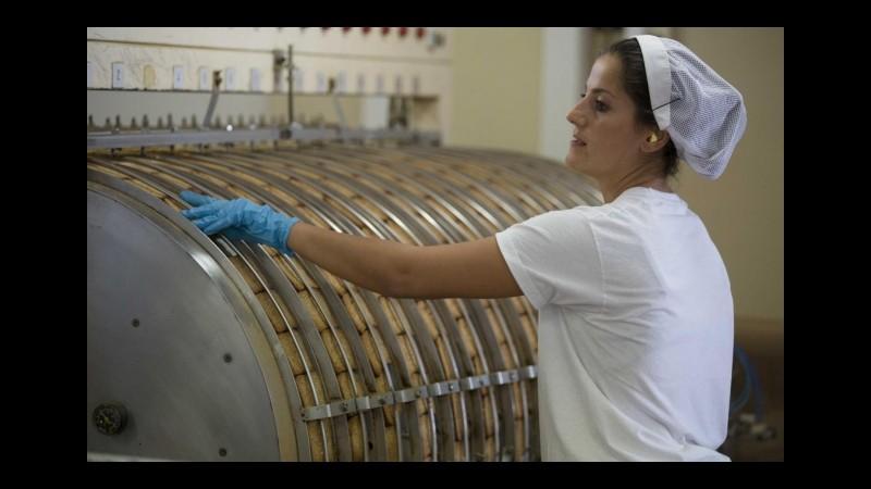 Imprese, Istat: Crescono italiane all'estero, fatturato a 542 miliardi