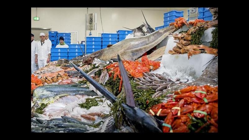 Natale, Coldiretti: 850 milioni spesi in pesce per le feste, +5% in un anno