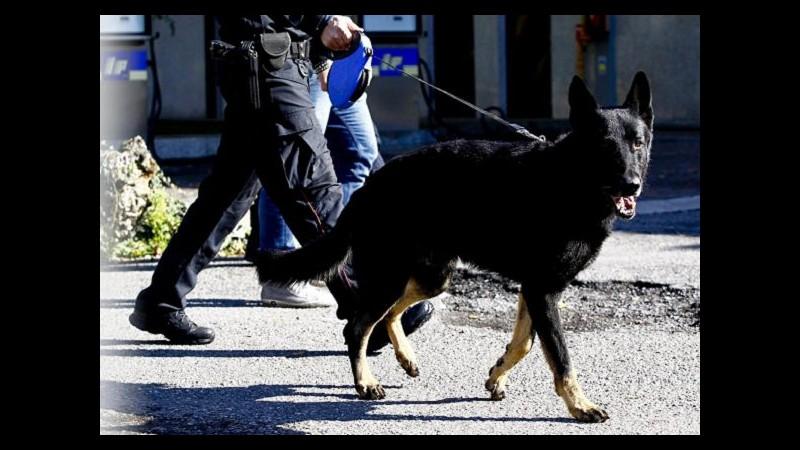 Imperia, usano su cani da caccia radiocollari illegali: tre denunciati