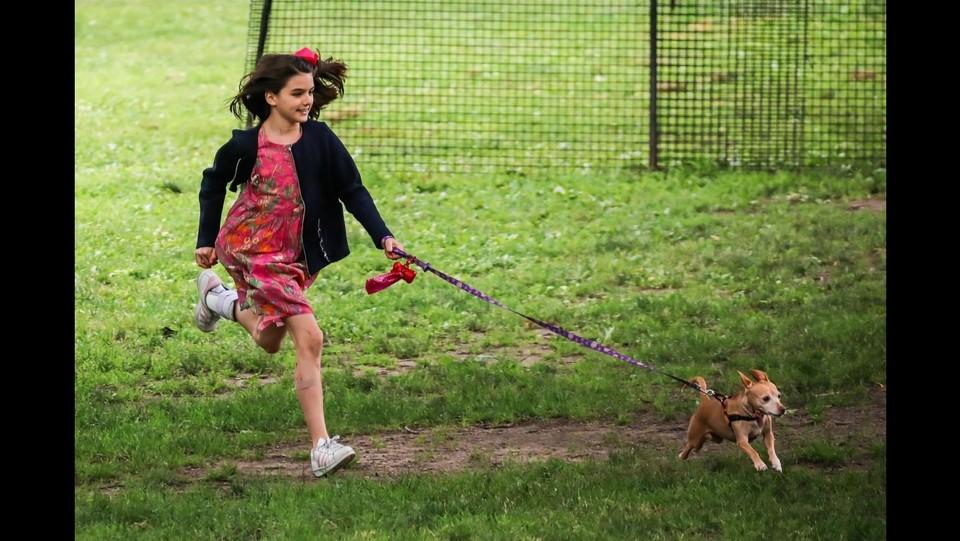 Suri Cruise si diverte  al parco con i cani ©Backgrid