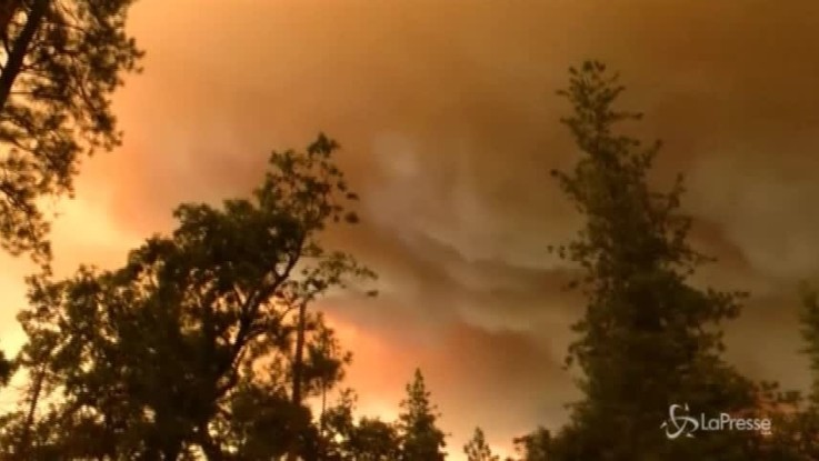Usa, vasto incendio minaccia lo Yosemite National Park