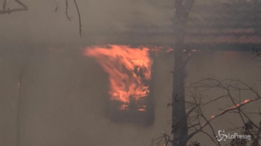 Incendi in Grecia: 50 morti e 150 feriti