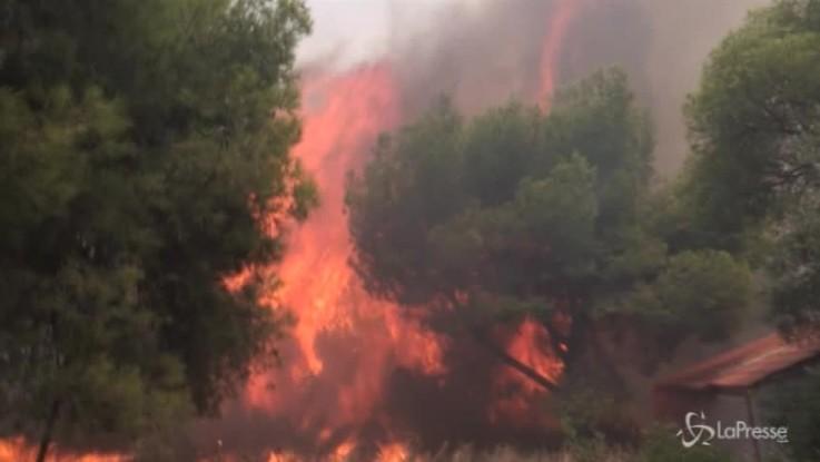 Inferno di fuoco in Grecia, bimbi e turisti tra le vittime