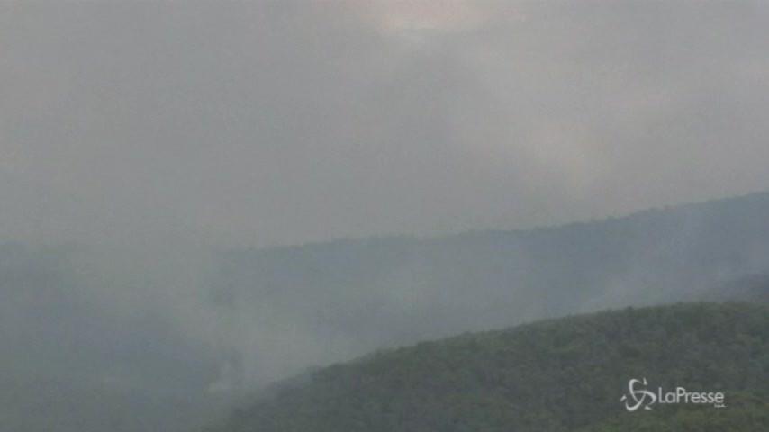 Roghi in Grecia, continua la lotta contro le fiamme