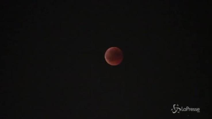 Eclissi: la Luna rossa vista da Ponte Sisto